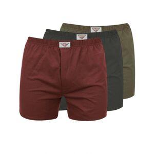 Pánské trenýrky bushman nicolas 3pack zelená/červená/hnědá xl